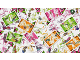 Splatoon - Playing Cards - Squid - Random